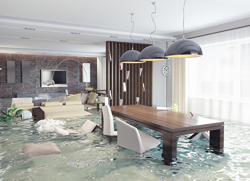 Your Homeowners Insurance Probably Doesn't Cover These Things